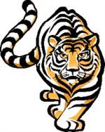 JP Case Tigers