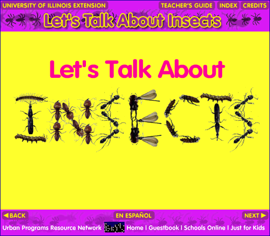 Lets Talk About Insects