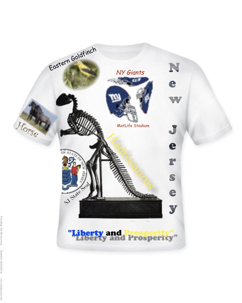NJ State Symbols T shirt